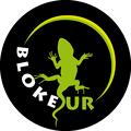 Bloke Sur Logo